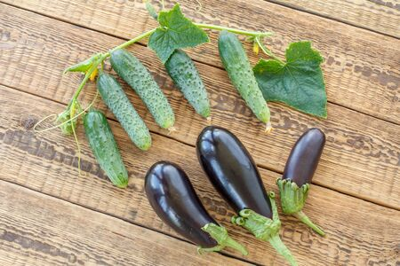 Just picked cucumbers and eggplant on old wooden boards
