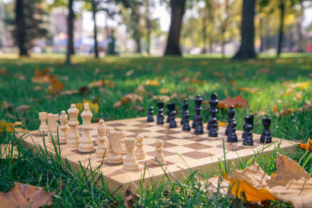 Wooden chessboard and chess pieces on green grass covered with dry yellow leaves in the city park. Shallow depth of field. Focus on white pieces.