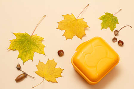 Plastic lunchbox, dry yellow maple leaves and an acorn on the beige background. Top view.