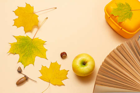 Ripe apple, a book, a plastic lunchbox, dry yellow maple leaves and acorns on a beige background. Top view.