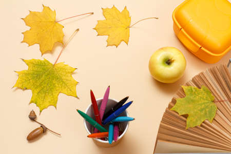 Ripe apple, a book, a plastic lunchbox, pens, dry yellow maple leaves and an acorn on the beige background. Top view.