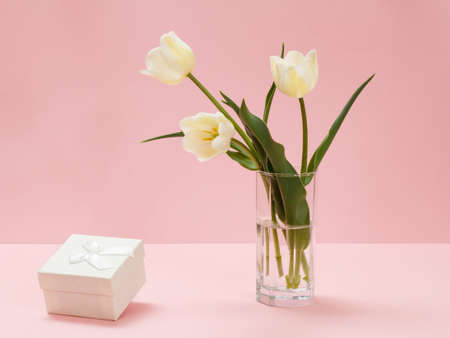 Bouquet of yellow tulips in glass vase and a gift box on a pink background.