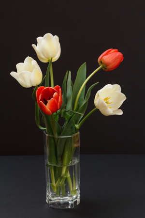 Bouquet of yellow and red tulips in a glass vase on the black background.