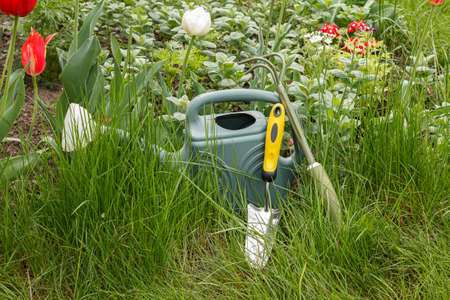 Watering can, a small rake and a shovel next to a flowerbed with green grass. Top view. Garden tools.