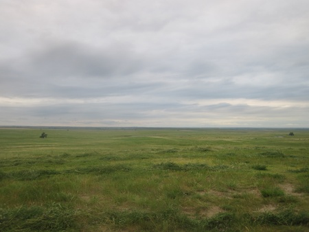 Prairie grass below cloudy sky