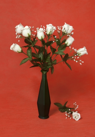 A bouquet of white roses with red background