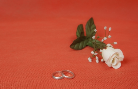 Two silver rings with rose in red background Stock Photo