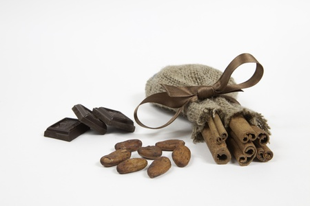 A pieces of chocolate, cocoa beans and cinnamon on white background