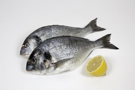 Fishes with lemon on withe background Stock Photo