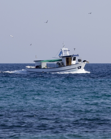 A fishing boat with seagulls