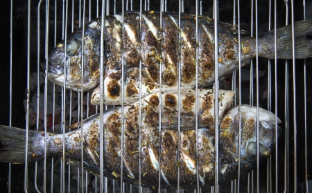A barbecue with a fresh fishes