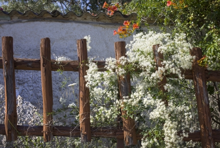 An old fence with flowers in front of a home in Greece