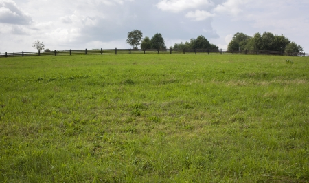 A grass field and trees on a hill