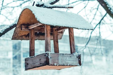bird feeder hanging on a tree, winter 스톡 콘텐츠