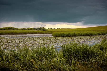 Summer landscape, a river and a sky covered with picturesque storm clouds