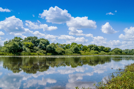 summer landscape: a river in which white curly clouds are displayed Stock Photo