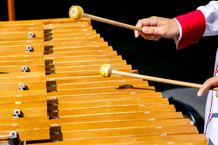 The boy plays the xylophone during the concert