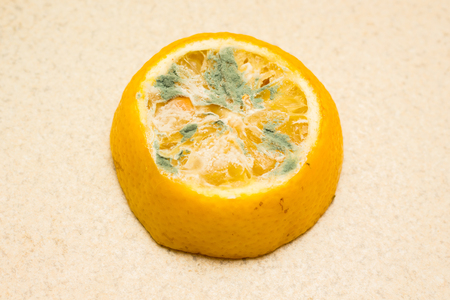 Moldy lemon on a light background. Spoiled foods that are dangerous for consumption