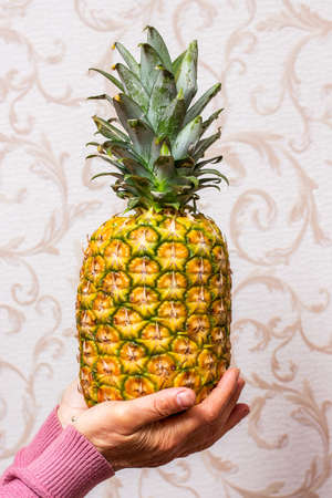 A woman in the room holds a ripe tasty pineapple in her hands