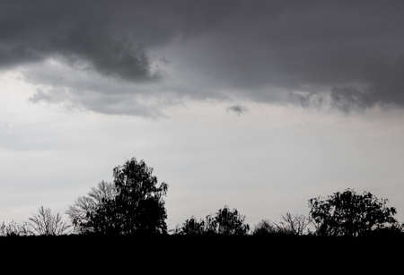Silhouettes of trees on the background of a dark sky with dramatic clouds during a thunderstorm Zdjęcie Seryjne