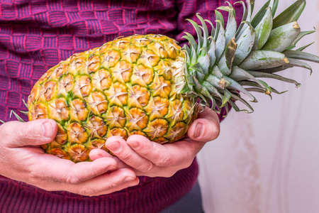 A man holds a ripe tasty pineapple in his hands