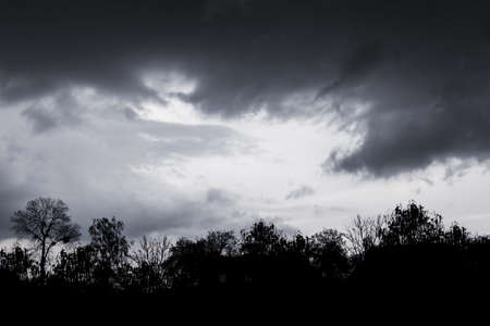 Dark storm clouds in the dramatic sky during a storm. Silhouettes of trees against the background of a thunderstorm sky