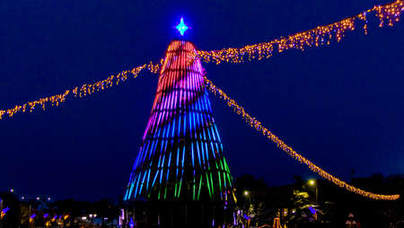 Christmas and New Year tree decorated with colorful lights at night