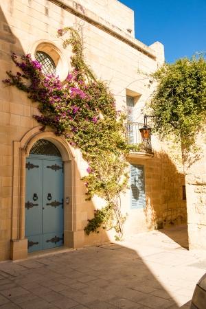 Mdina courtyard with fuchsiaflowers, malta