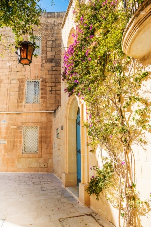 Mdina patio con fuchsiaflowers, malta photo