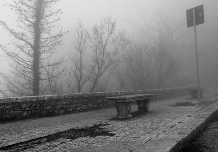 lonely bench in misty park photo