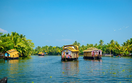 backwaters: Traditional Houseboats in the backwaters of Kerala, India