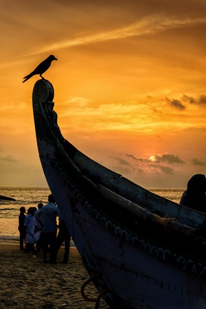 rostrum: Bird perched on a boat rostrum at sunset with sea in background