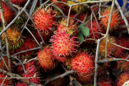 Fresh Rambutan with stems
