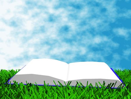 illiteracy: The book on the grass against a backdrop of sky