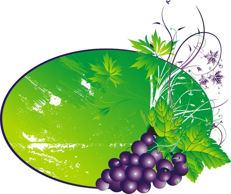 The stylised cluster of grapes with leaves on an abstract background Vector