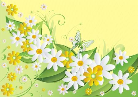 黄色し、白の緑のカモミールもそれは光の蝶と黄色の背景