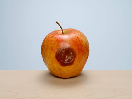 Bruised ripe red apple starting to rot on wood table with blue background. Concept: rotten to the core, one bad apple...