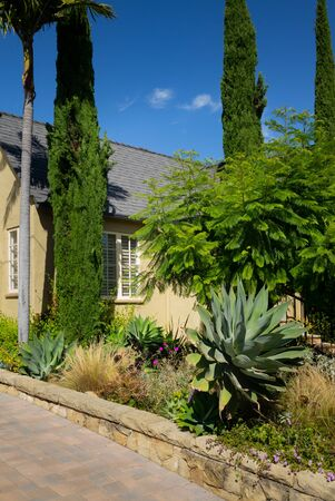 California home agave and other planting for landscape inspiration and design ideas