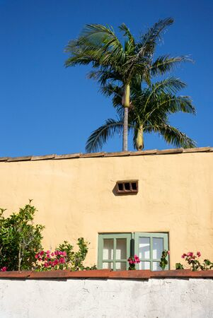Typical California home with painted plaster exterior, a garden wall, and palm trees