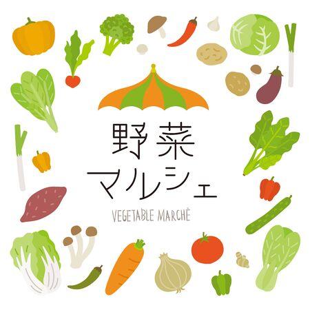 fresh colorful vegetables vector set