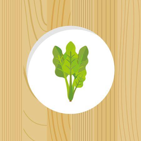 vegetable - spinach & wood frame