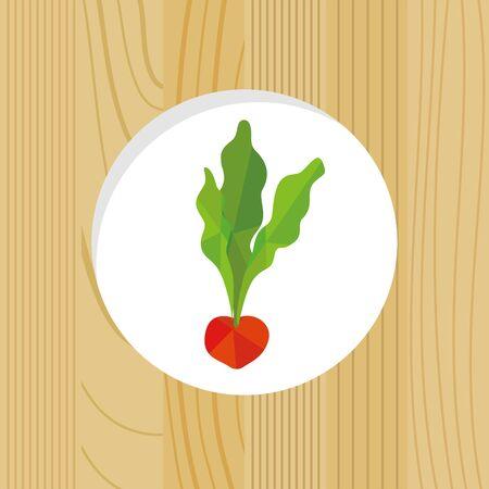vegetable - radish & wood frame Иллюстрация