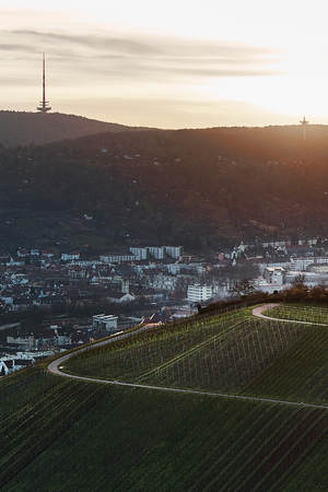 View down the idyllic vineyards and fruit orchards of Stuttgart-Rotenberg Germany