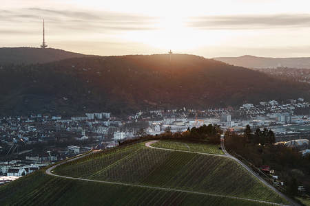 Blick auf die idyllischen Weinberge und Obstgärten von Stuttgart-Rotenberg Deutschland Lizenzfreie Bilder