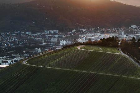 Uitzicht op de idyllische wijngaarden en fruitbomen van Stuttgart-Rotenberg Duitsland Stockfoto