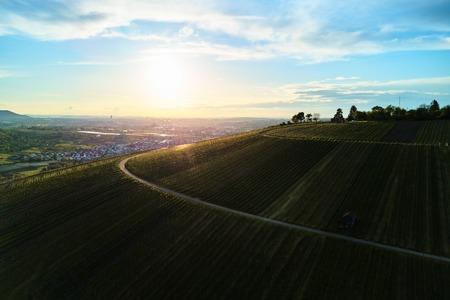 wijngaarden landschap op de heuvel van top met drone, dji Stockfoto