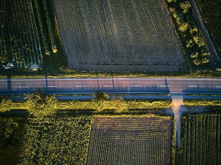 Luftaufnahme einer Landstraße mit bunten landwirtschaftlichen Feldern im Frühjahr - Deutschland
