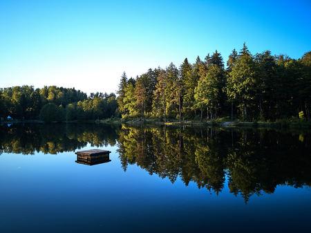 Blick auf einen kleinen See und grüne Bäume um bei Sonnenuntergang