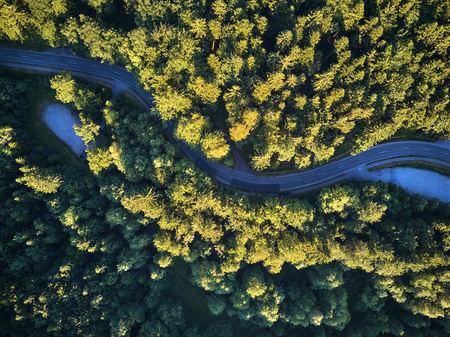 Draufsicht auf den Weg durch die Bäume. Blick vom Ballon. Straßenansicht von oben genommen von quadrocopter Lizenzfreie Bilder