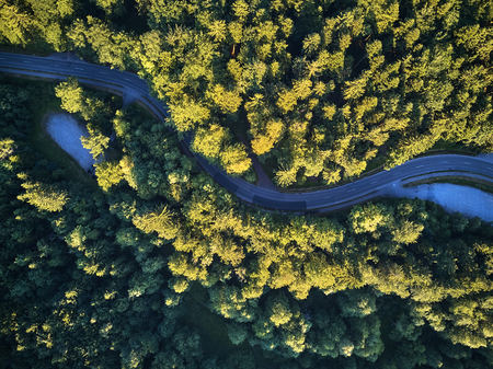 Top view of the path through the trees. View from balloon. Road view from above taken by quadrocopter
